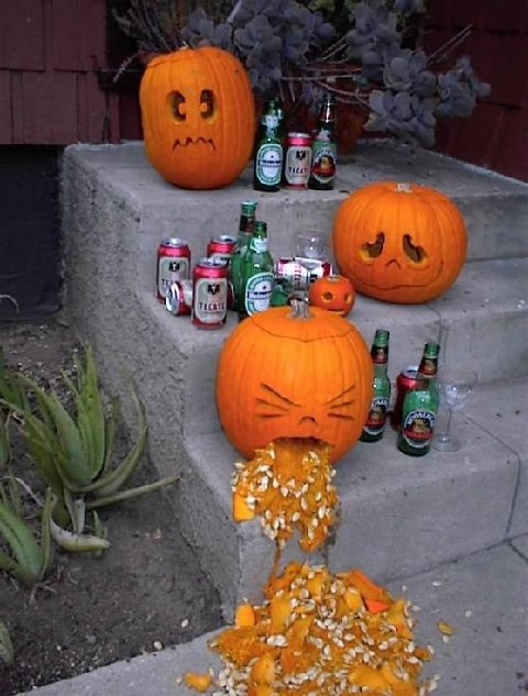 Pumpkins drink beer, one throws up